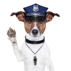 Hundepolizei