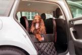 Dogstyler® für die Rückbank Earl Red Angel S - L Hundebox Kunstleder Hund im Auto sichern