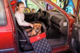 Dogstyler® Basic für die Autositze Berlin XS - S Hundebox Kunstleder Hundesitz