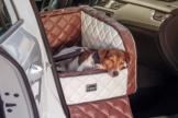 Dogstyler® Excelsior für die Autositze White Baron XS - S Hundebox Kunstleder